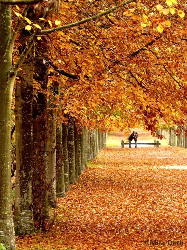 amoureux-d-automne-mila-deth